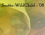 Scotto & WildChild - '08